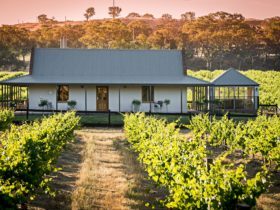 Brockenchack Vineyard Bed & Breakfast is set amongst the vines in Eden Valley