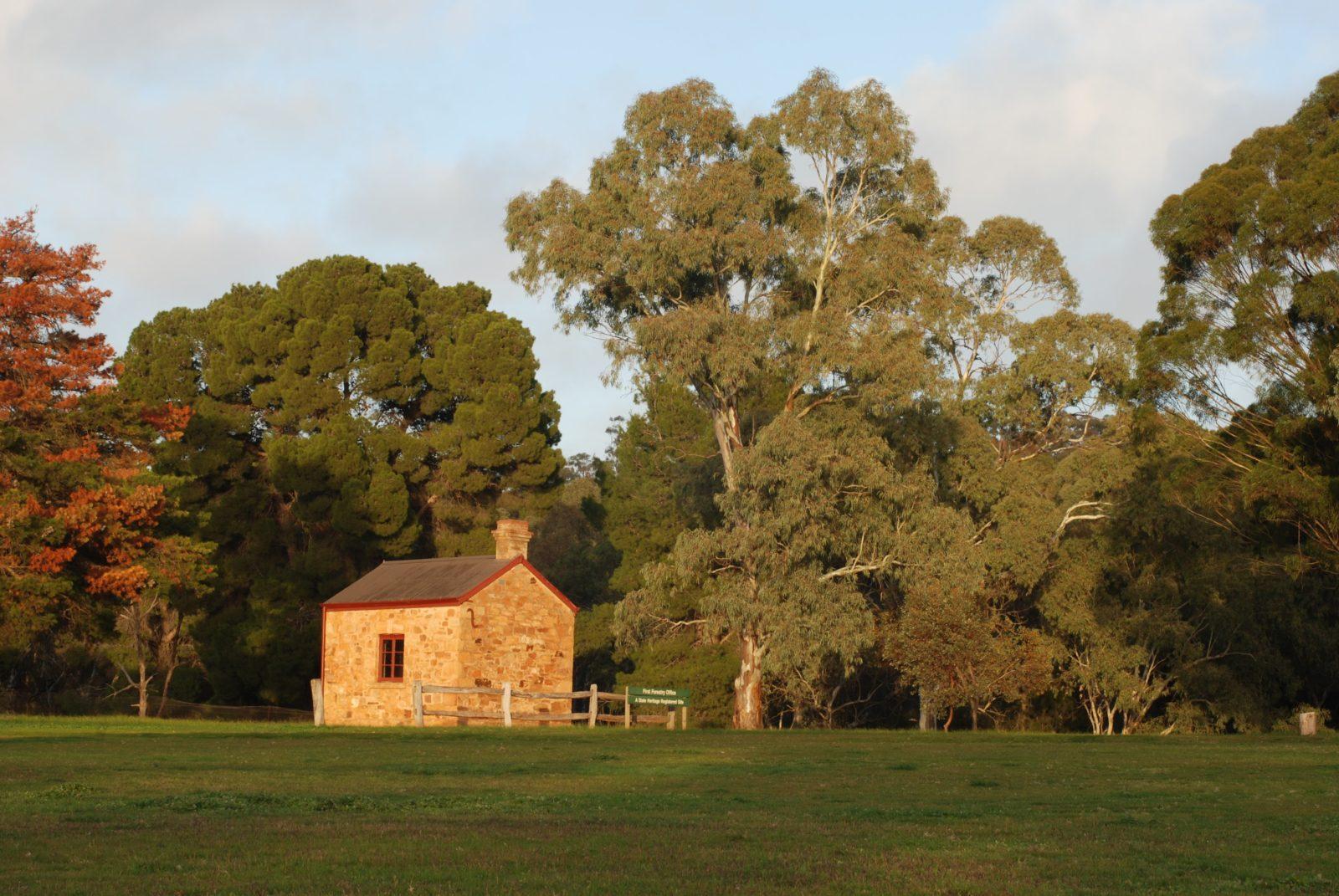Curnow's Hut, Bundaleer Forest