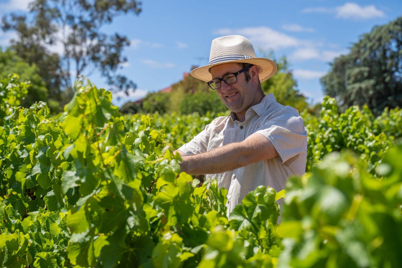 Derek Fitzgerald - Chief Winemaker at BFW