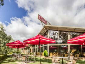 Mannum Motel - Outdoor dining
