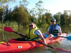 Hire a kayak for a day and explore our wetlands following a trail map