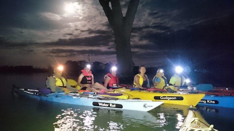 Canoe the Riverland - Tours