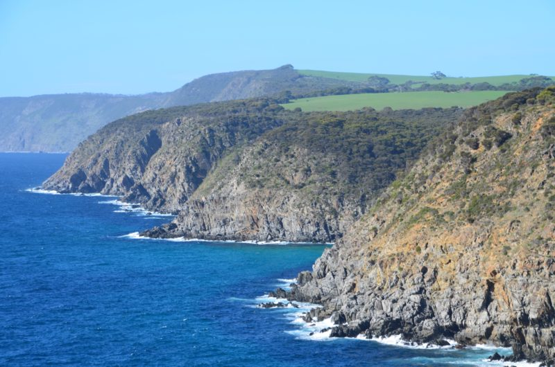 Cape Borda Harveys Return