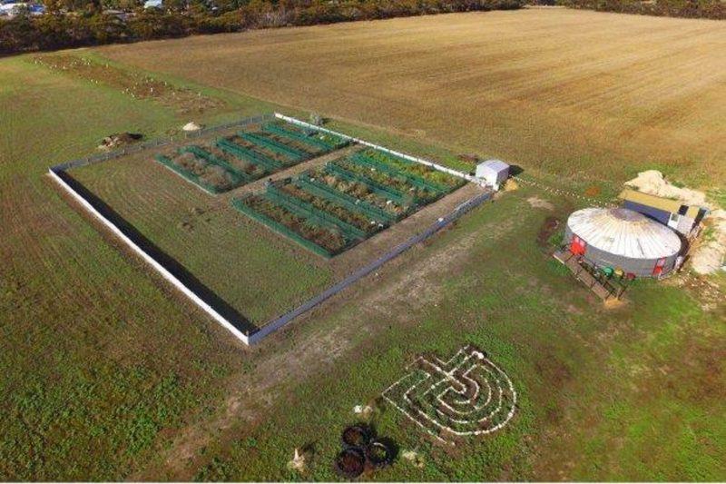 Farm drone view