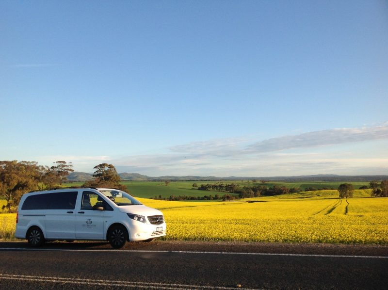Checking out the Canola at the end of another great day!