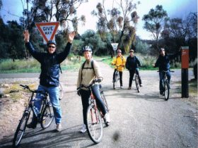 5 Cyclists after completing Trail