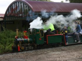 Steam train in action