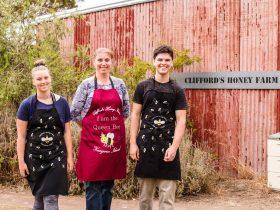 A taste of Clifford's Honey Farm
