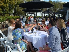 Join in the celebrations with beautiful Coonawarra wines