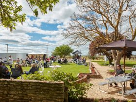 Relax and kick back with family and friends on weekends with events at cellar doors in the region