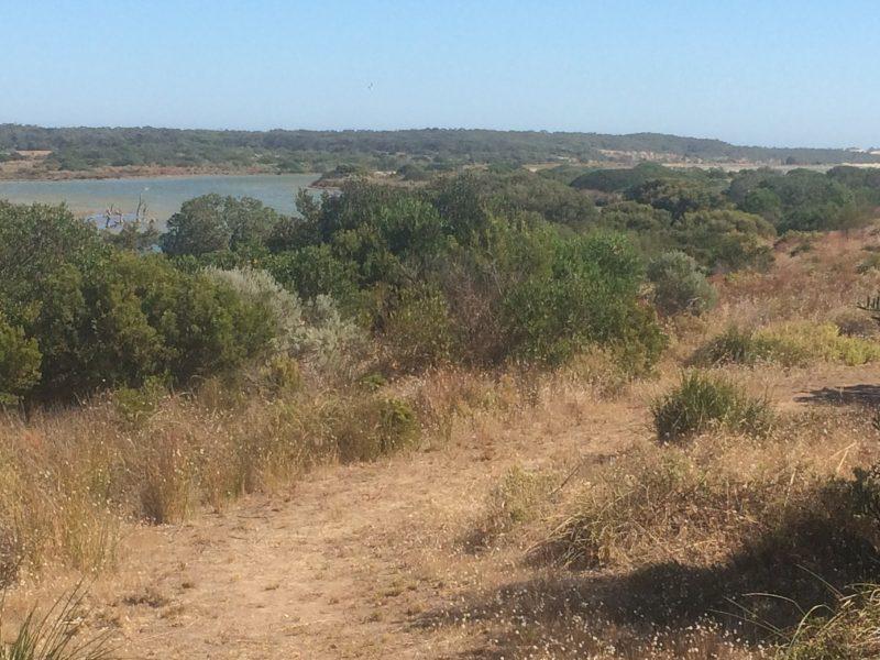 Nruggie Ngoppun walking trail