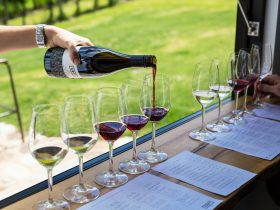 CRFT Wines - wine flights