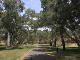 Shared Path in Dead Mans Pass