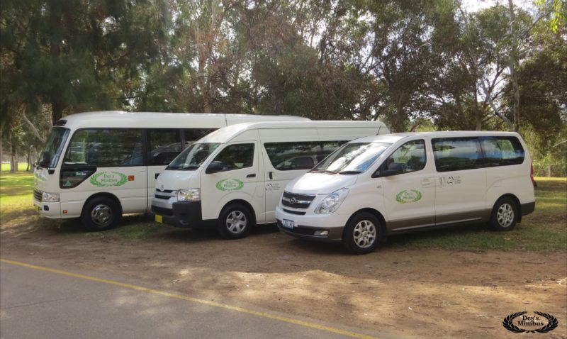 Showcasing corporate buses of Des's Minibus in Bonython Park. A 7, 13 and 21 seat bus are shown.