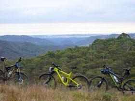 overlooking Adelaide