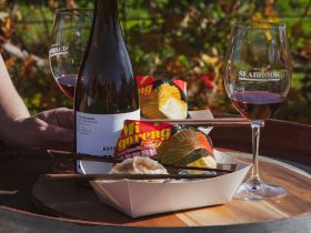 Dumplings & Grenache @ Seabrook Wines