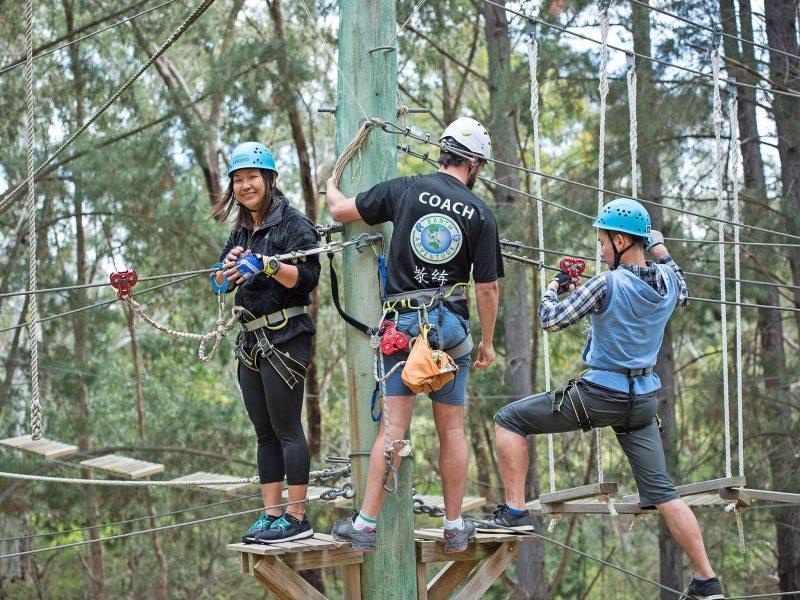 Teamwork, High Ropes
