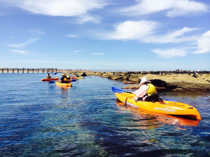 Explore The Reef Kayak Tour