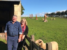 Bruce Hay & Linda Hay owners and tour guides at Echo Farm Mount Gambier