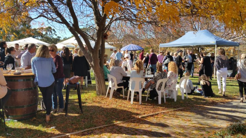 Gourmet Weekend at Eldredge Wines