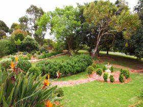 Manicured Garden
