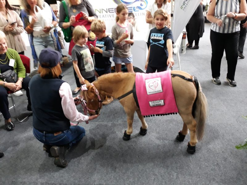 Nolton Park Horses Healing Hearts, miniature therapy horse