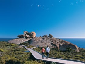 flinders-chase-remarkable-rocks