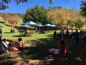 Picnic style setting in beautiful autumn surrounds