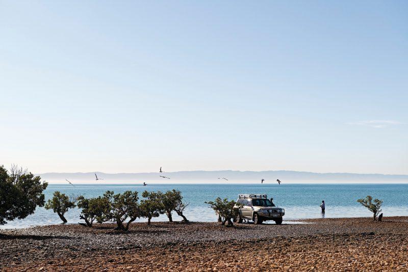 Fitzgerald Bay Shingle Beach Ridges