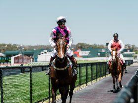 Gawler & Barossa Race Day