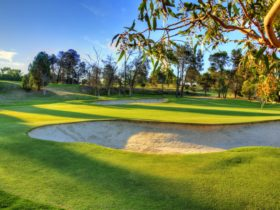 Gawler Golf Club