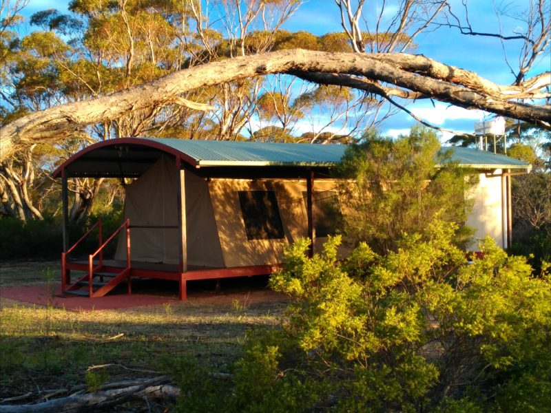 Kangaluna tents are large 10 by 5 metres space with 2 bedrooms & en-suite