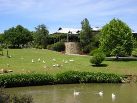 Mount Hurtle Winery grounds