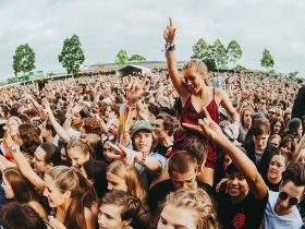 Wayville crowd