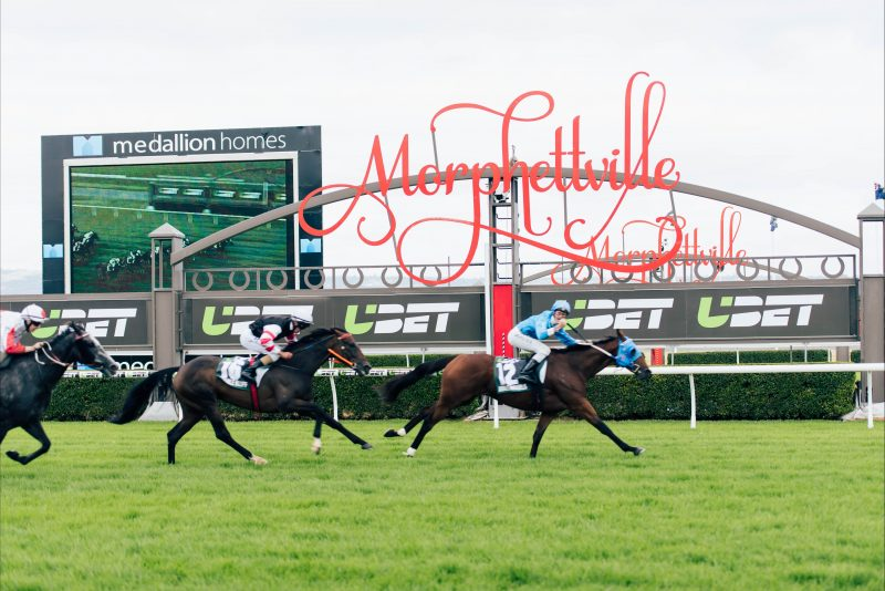 Adelaide Cup 2019