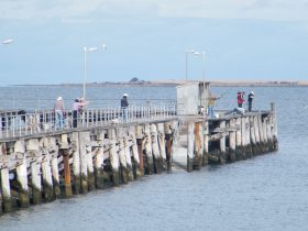 Gynburra Fishing Competition at Port Victoria