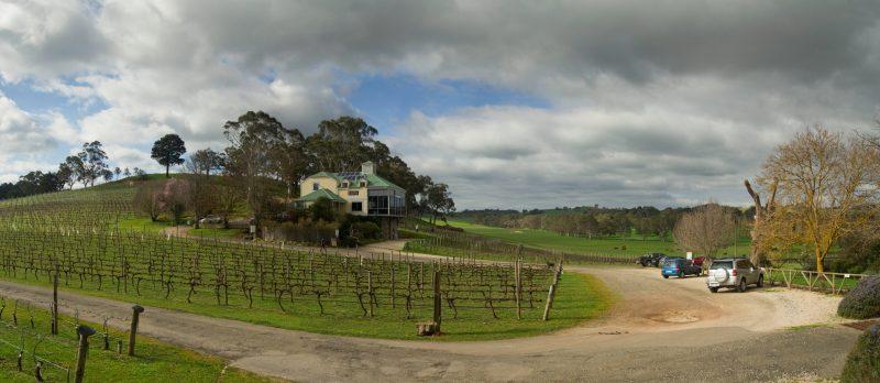 Hahndorf Hill Winery cellar door Adelaide Hills Winter Pruned vines