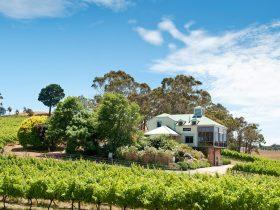 Hahndorf Hill Winery Adelaide Hills Cellar door Springtime