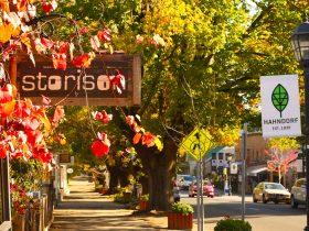 Footpath running alongside Hahndorf main street with signage, trees and autumn vines