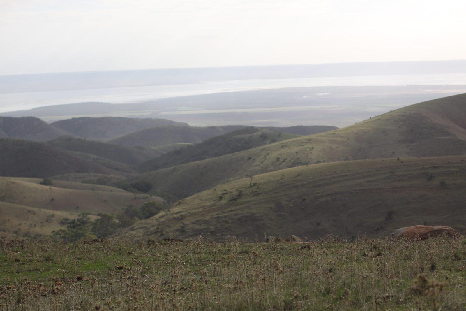 Hancocks Lookout, Southern Flinders Ranges
