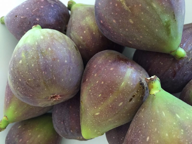 Figs both fresh and preserved