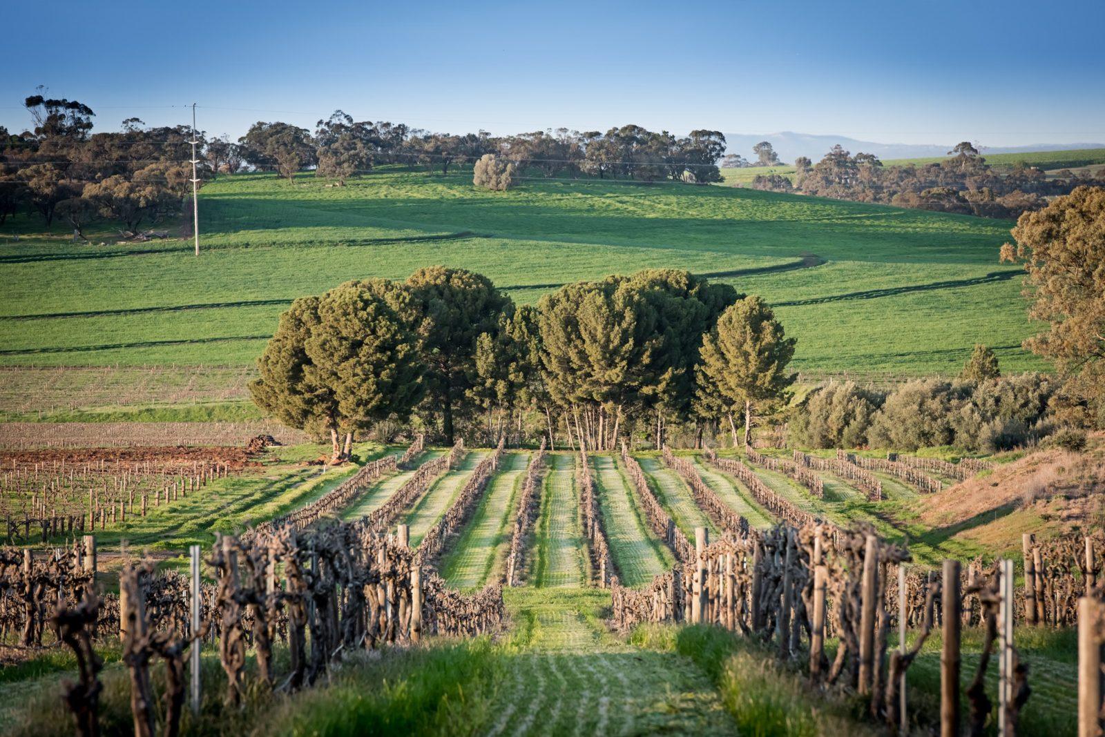 Heritage Wines