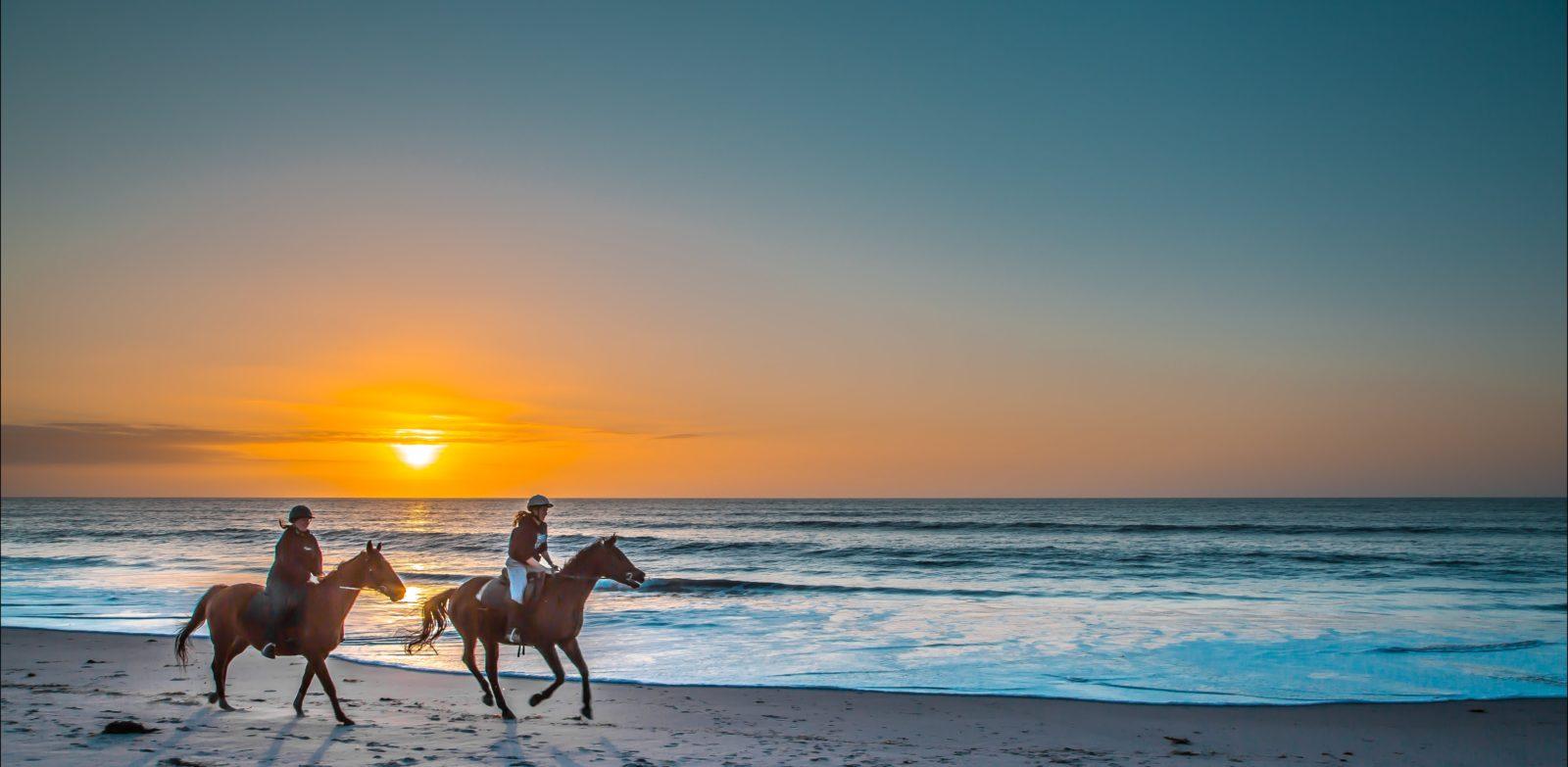 Horse riding on the beach south australia