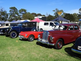 Hundreds of car, motorbike, tractors , trucks and stationary engines