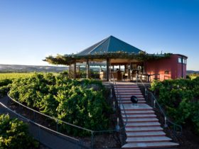 Hugh Hamilton Wines Cellar Door McLaren Vale