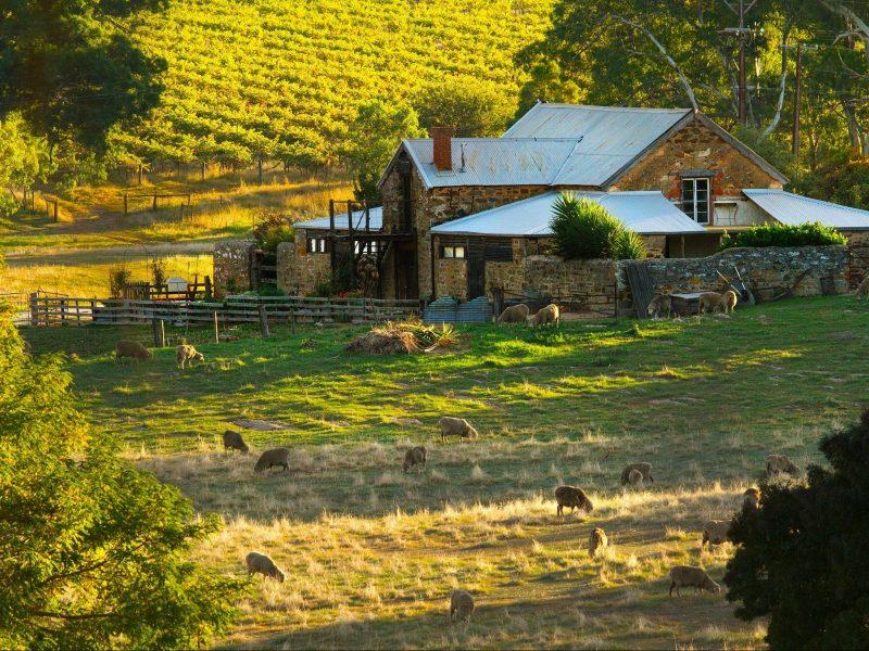 Hutton Vale Farm