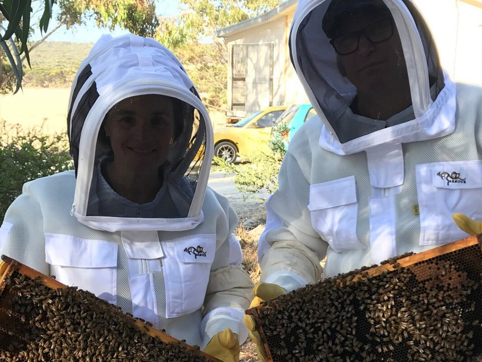 A Couple participating in the Experience holding a frame of bees