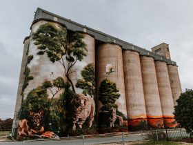 Karoonda silo art by Heesco