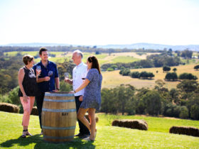 Kay Brothers Cellar Door