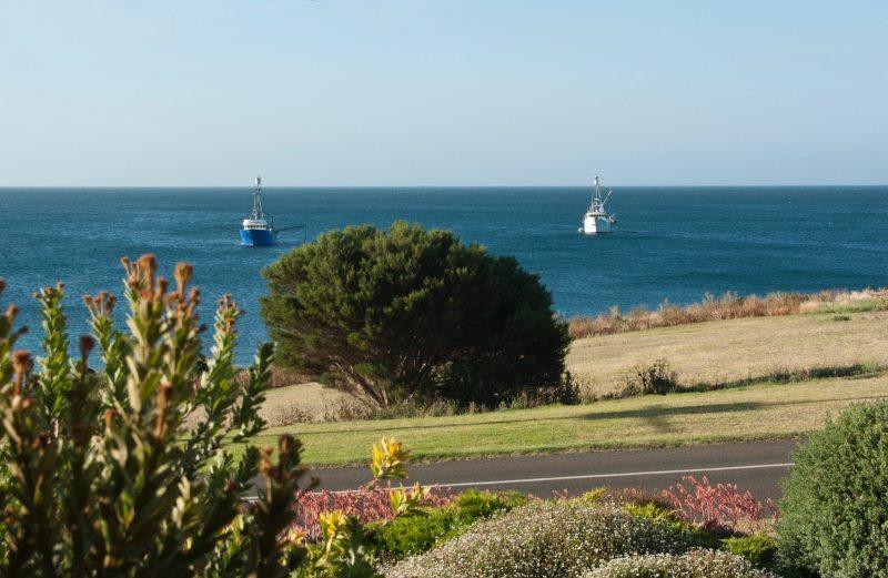 Tuna Boats at front of Kepals